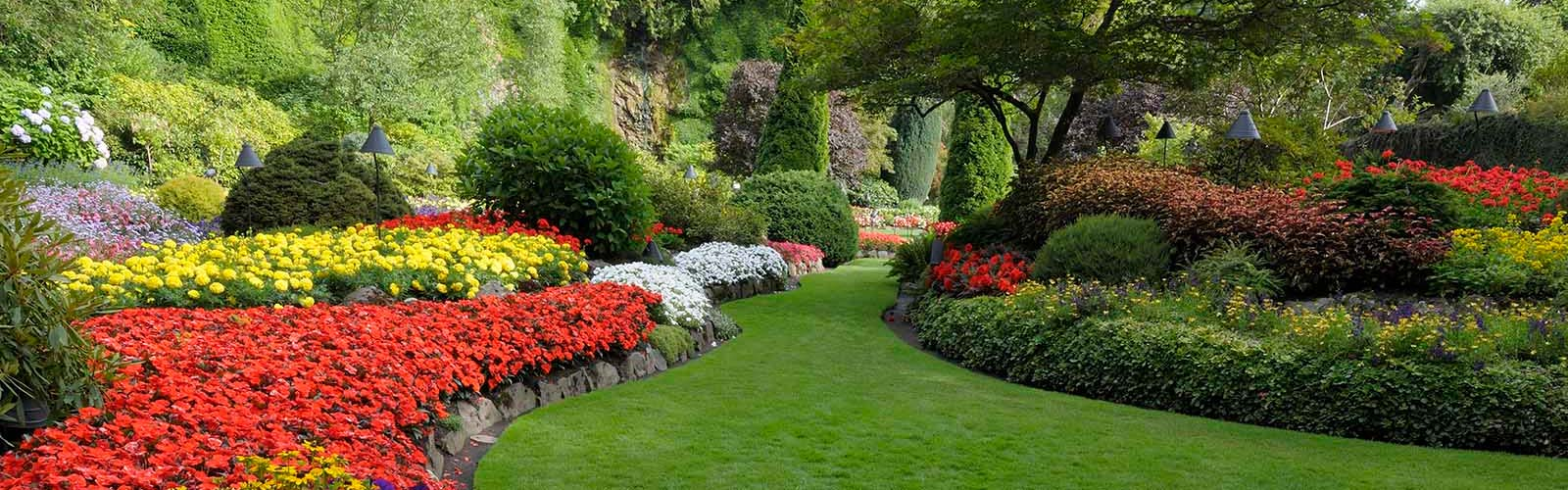 Local landscaping professionals better homes gardens for Local gardening services